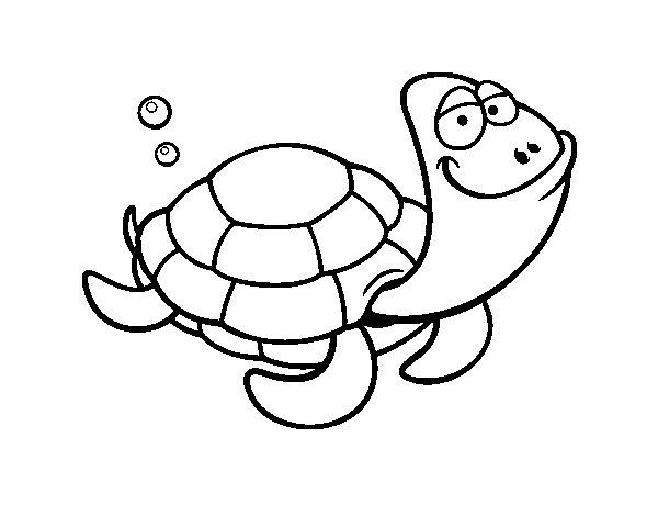 Dibujo de Tortuga cabezona para Colorear