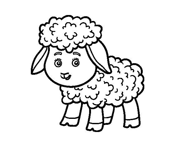 Dibujo de Una ovejita para Colorear