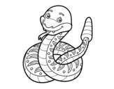 Dibujo de Una serpiente de cascabel para colorear