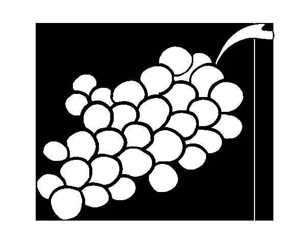 Dibujo de Uvas moradas para Colorear  Dibujosnet