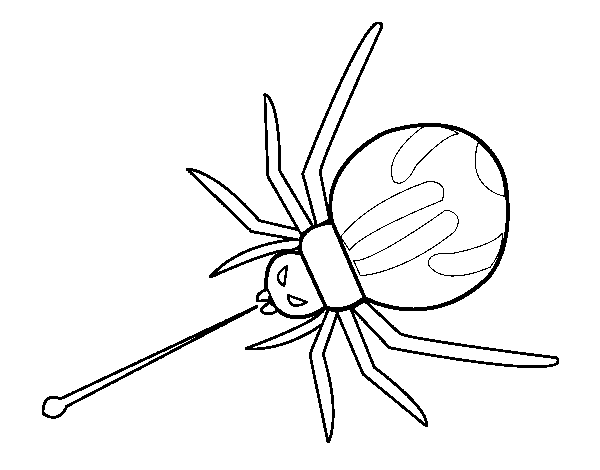 Dibujo de Araña expulsando veneno para Colorear - Dibujos.net