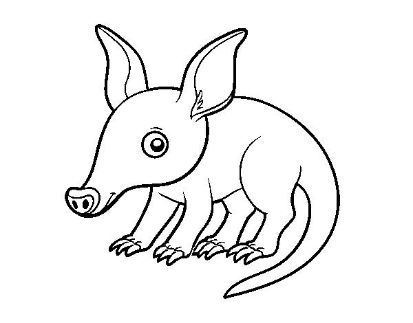Dibujo de Cerdo hormiguero para Colorear - Dibujos.net