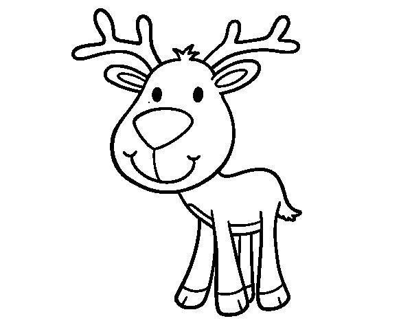 Dibujo de Ciervo bebé para Colorear - Dibujos.net