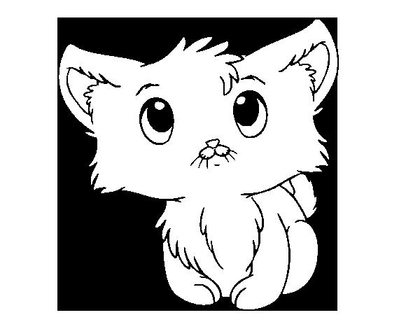 Dibujo de Gatito lindo para Colorear - Dibujos.net