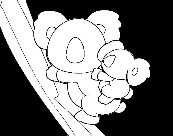 Dibujo De Madre Koala Para Colorear Dibujosnet