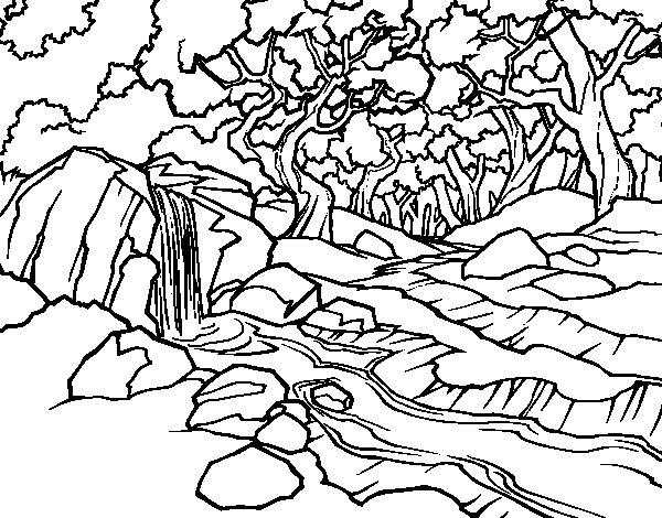 Imagenes De Paisajes Naturales Para Colorear Arboles Dibujos Para