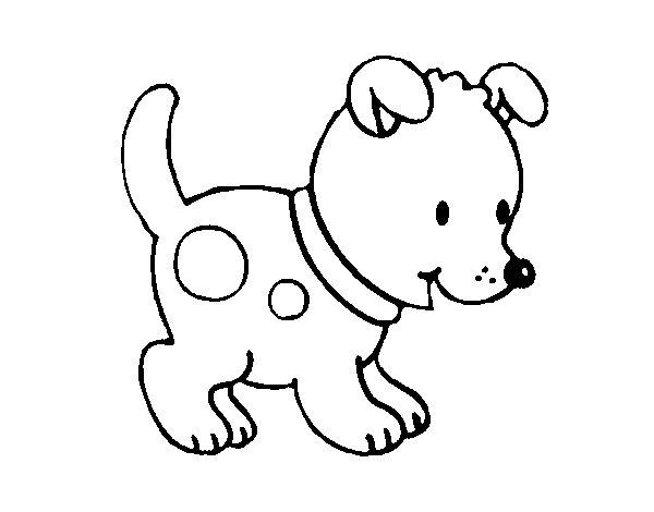 Dibujo de Perrito pequeño para Colorear - Dibujos.net