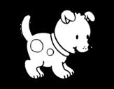 Dibujos De Cachorros Para Colorear Dibujosnet