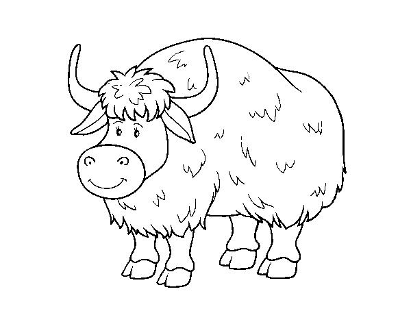 Dibujo de Un búfalo para Colorear - Dibujos.net